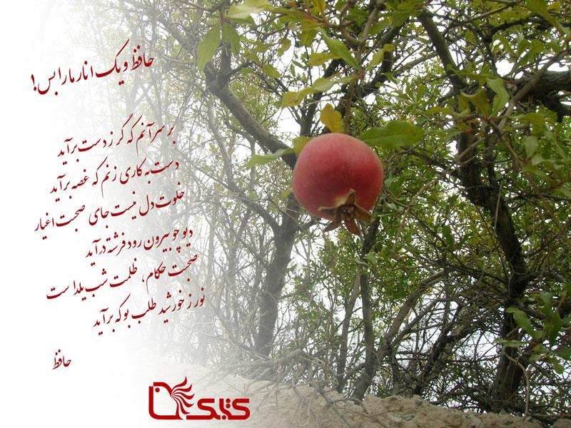 حافظ و یک انار ما را بس!