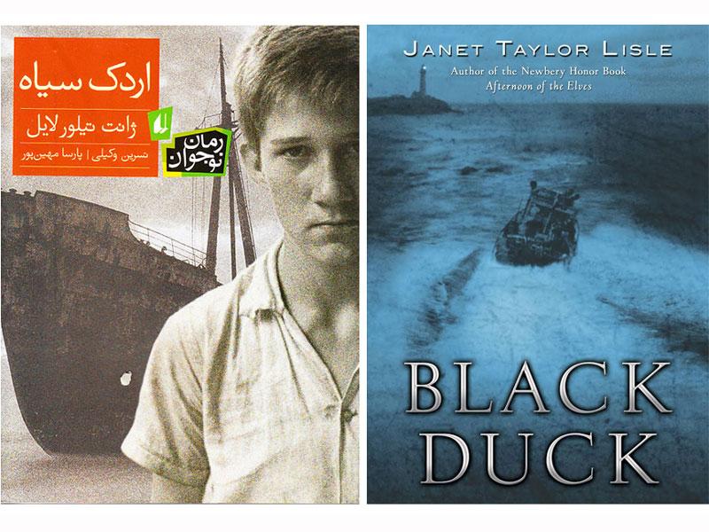 بررسی رمان «اردک سیاه»