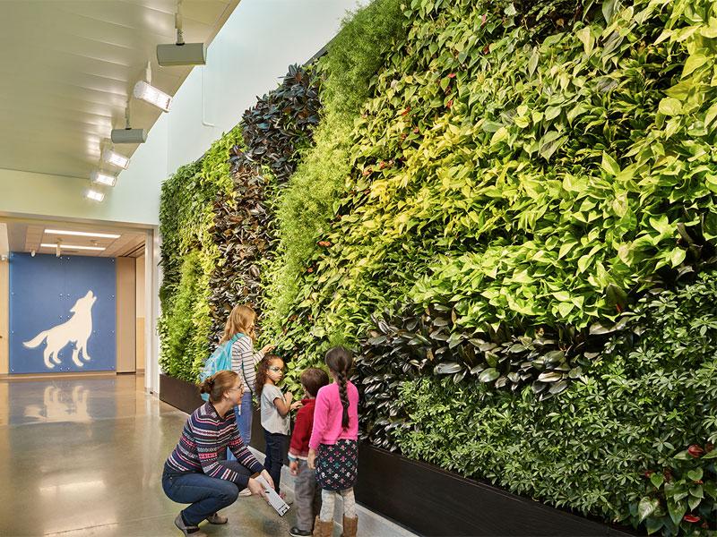 پیوند کودک و طبیعت در طراحی زیستگرای فضای مدرسهها