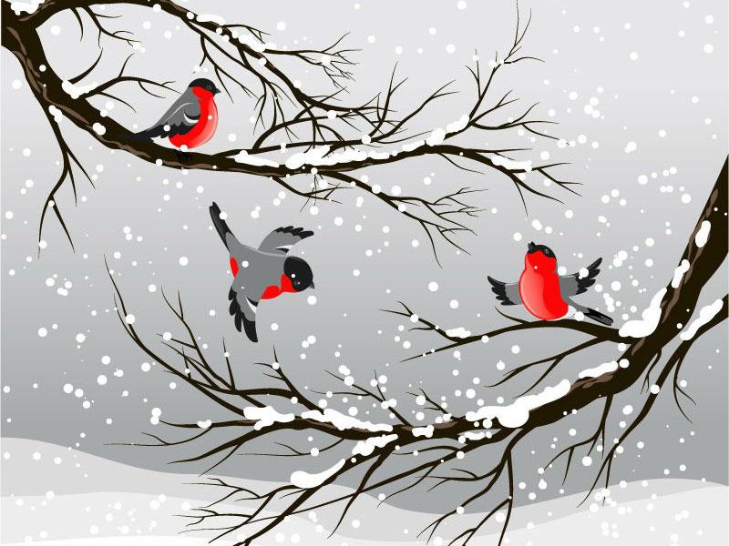 شعر گنجشک و برف - محمود کیانوش