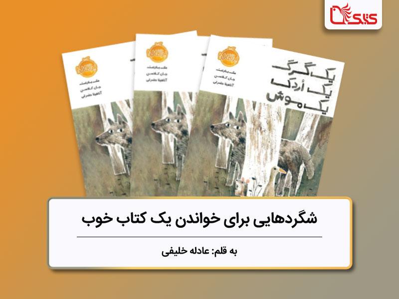شگردهایی برای خواندن یک کتاب خوب، بررسی کتاب «یک گرگ یک اردک یک موش»
