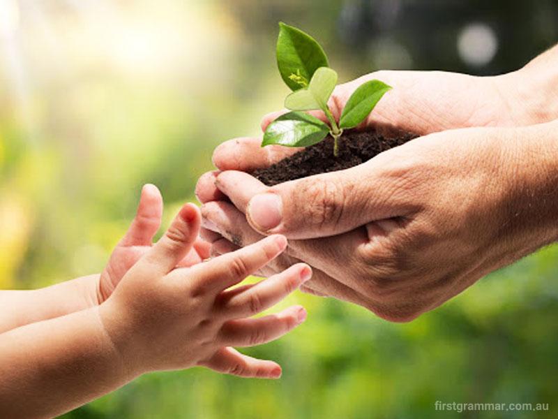گرامیداشت روز درختکاری: حق برخورداری کودکان از چشماندازی روشن نسبت به آینده