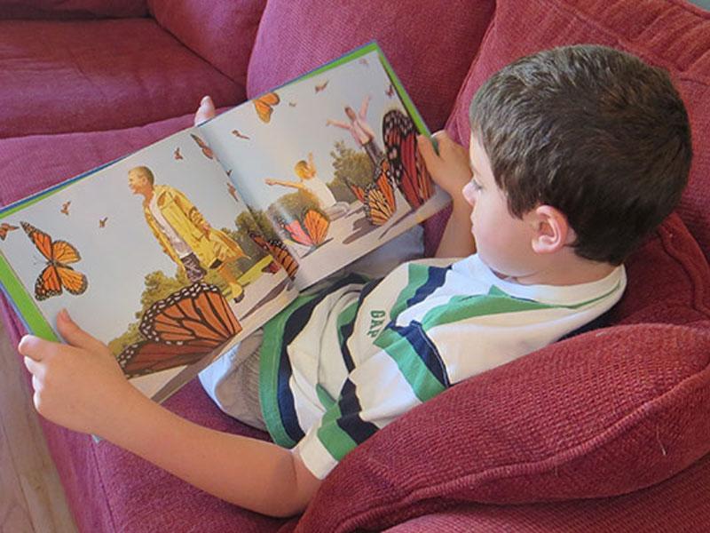 کتاب های تصویری بدون کلام با کودکانتان بخوانید