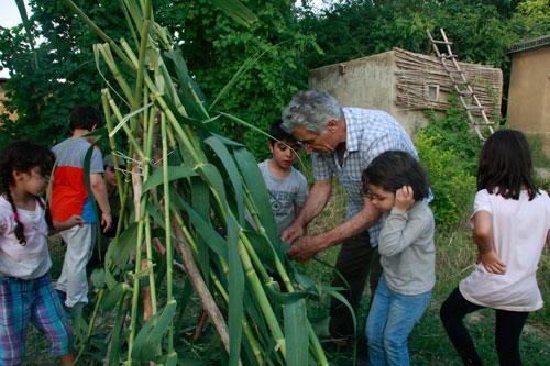 گفت و گو با عبدالحسین وهابزاده، پایه گذار نخستین مدرسه طبیعت در ایران