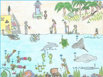 ۲۰۱۱، سال جهانی جنگل ها!
