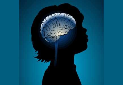 رابطه مغز و یادگیری چیست؟