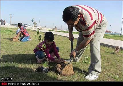 کودکان درخت کاشتند و کتاب هدیه گرفتند