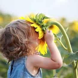 سمینار تخصصی آموزش های زیست محیطی به کودکان