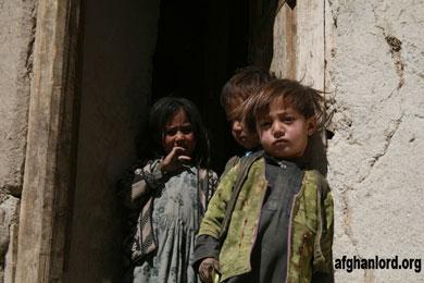 سازمان ملل در افغانستان به جنگ گرسنگی میرود!