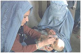 سلامتی ارمغان روز صلح برای کودکان افغان
