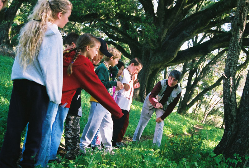 ارتباط کودکان با طبیعت فقط مخصوص تابستان نیست