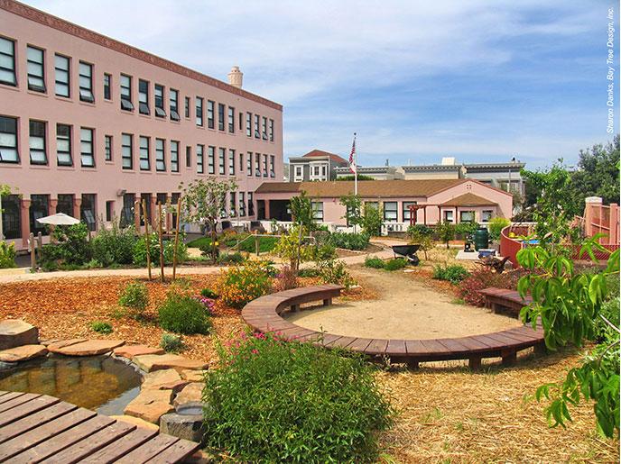 تأثیر فضای سبز حیاط مدرسه در یادگیری و سلامت کودکان