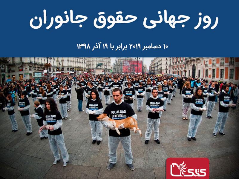 ۱۰ دسامبر برابر با ۱۹ آذر، روز جهانی حقوق جانوران