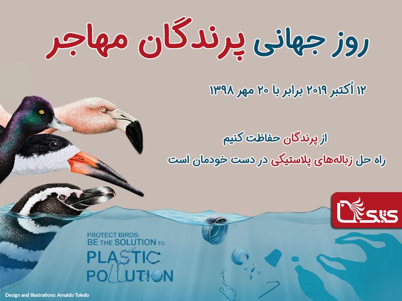 ۲۰ مهر، روز جهانی پرندگان مهاجر