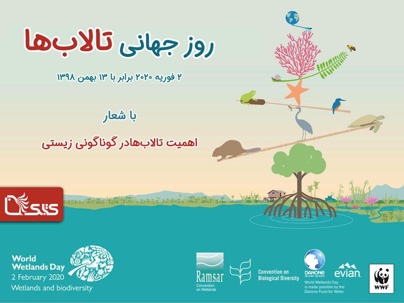۱۳ بهمن روز جهانی تالابها