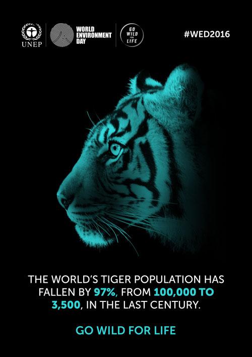 جهان برای نجات حیات وحش متحد میشود