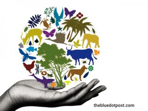 حفظ تنوع زیستی، بخش حیاتی پیمان ما با یکدیگر و سیارهای است که در آن پرورش مییابیم