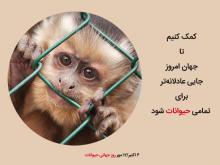 حیوانات را در روز جهانی حیوانات دریابیم