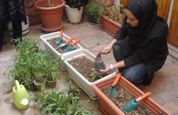 آموزش گل کاری و آشنایی با تغییرات آب و هوایی زمین
