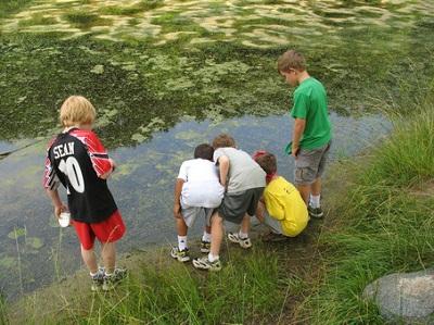 ۱۰ فعالیت محیط زیستی برای خارج از خانه