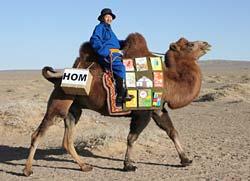 پروژه کتابخانه سیار کودکان در مغولستان