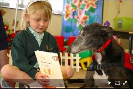 سگ ها بهترین شنوندگان هستند!